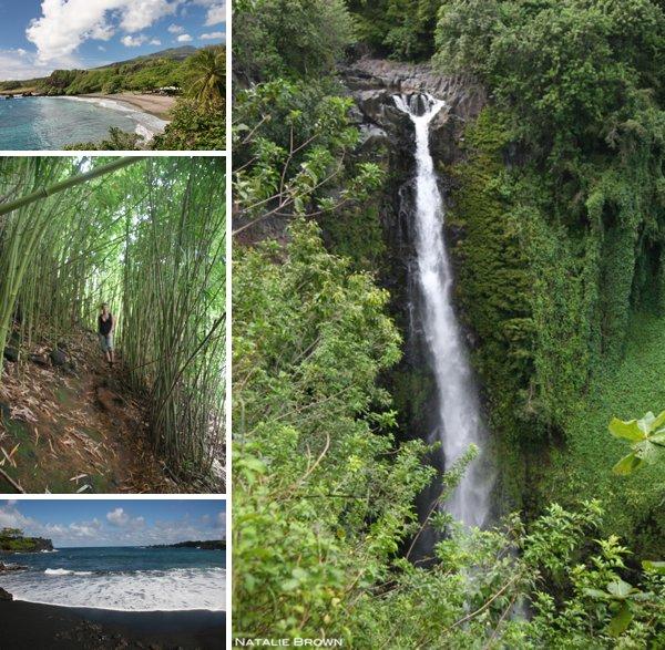 explore Maui landscapes